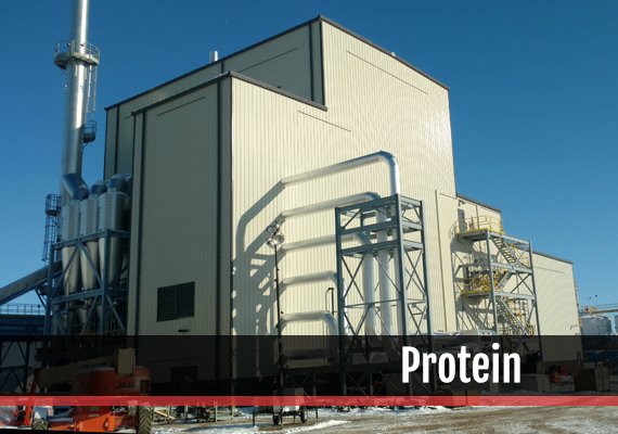 Fagen, Inc.'s experience in the Protein industry.